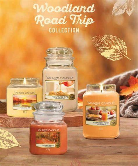 NEW-Woodland-Road-Trip-Collection